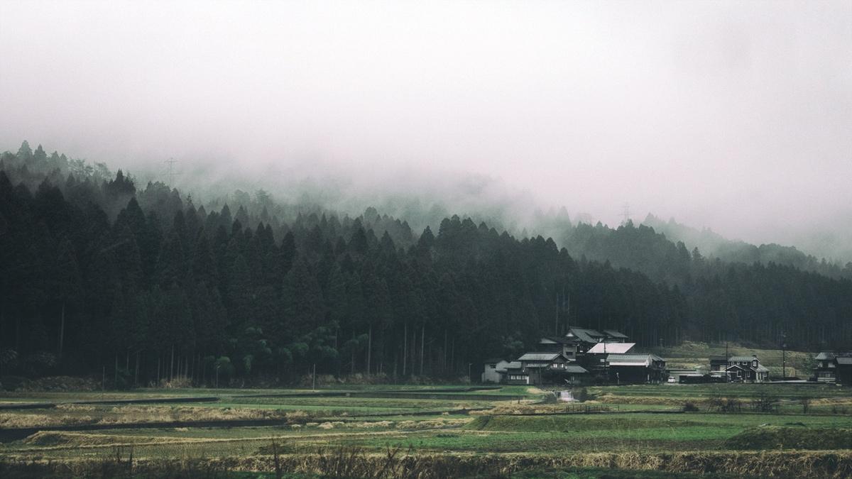 fukui-mist