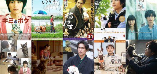 5 bộ phim Nhật Bản khiến nô lệ mèo phải lòng mèo hết lần này đến lần khác