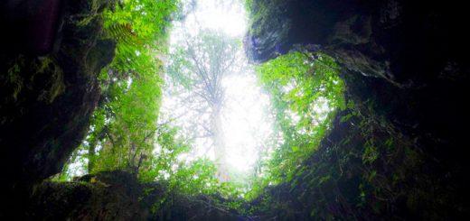 Hang động hình trái tim ẩn mình giữa núi rừng ở hòn đảo Yakushima