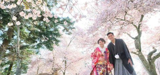 Bộ ảnh cưới tuyệt đẹp trong công viên Nara mùa hoa anh đào và