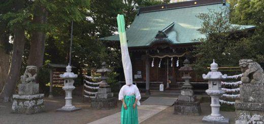 Ngôi đền Nhật Bản khiến du khách sốc với nghi lễ đội mũ hành dài tới 2m