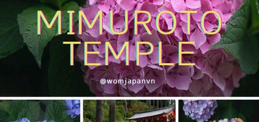 Chùa hoa Cẩm Tú Cầu - Mimuroto Temple - Kyoto