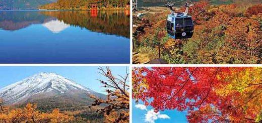7 địa điểm tuyệt đẹp vừa có thể ngắm lá đỏ vừa ngắm núi Phú Sĩ cùng lúc
