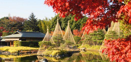 7 địa điểm ngắm lá đỏ đẹp nhất Nhật Bản năm 2021