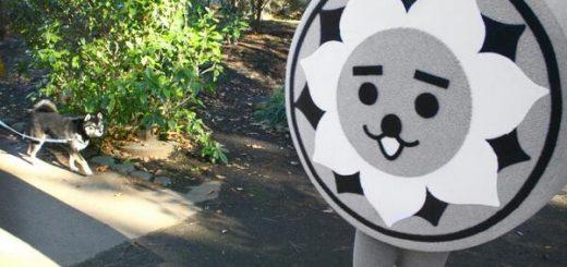 [Mascot] Nishikokun (にしこくん)