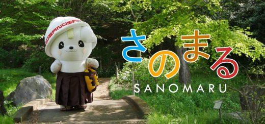 Sanomaru หมาน้อยน่ารักแห่งเมือง Sano