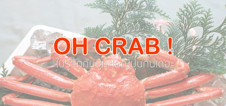Oh Crab ! เราจะไปกินปู .. ไปทำความรู้จักกับปูจากฝั่งทะเลญี่ปุ่นกันเถอะ