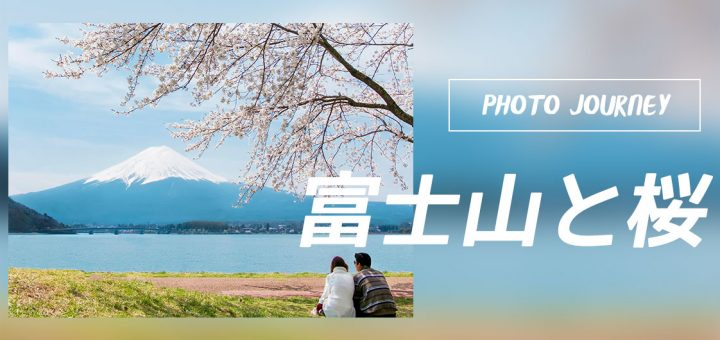 PHOTO JOURNEY :: FUJI & SAKURA