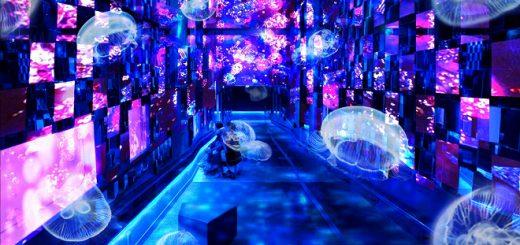 ชมโลกเทพนิยายใต้ท้องทะเล ที่ Sumida Aquarium กับอีเว้นท์แสนงามในธีม Fairy Tale in Aquarium ประจำฤดูใบไม้ร่วง