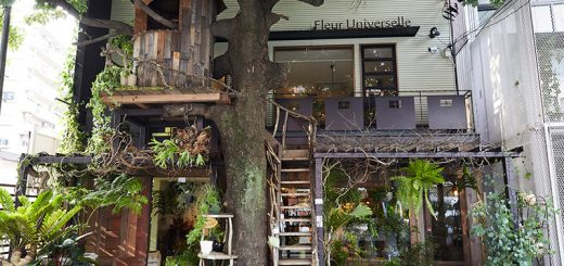 Les Grands Arbres คาเฟ่บ้านต้นไม้กลางกรุงโตเกียวสุดเก๋ที่ต้องไปโดนสักครั้ง!