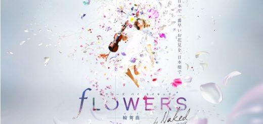 ชมดอกไม้ช่วงฤดูใบไม้ผลิก่อนใครในรูปแบบดิจิตอลอาร์ตที่ Nihonbashi โอซาก้า 2018