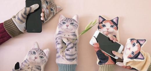 ถุงมือลายลูกแมวที่สามารถเล่นสมาร์ทโฟนได้