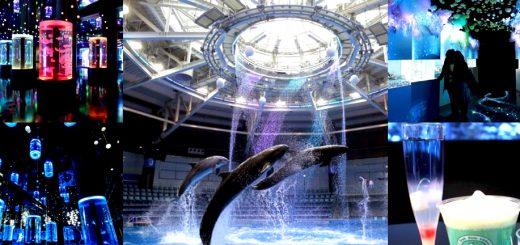 อควาเรียมปาร์คที่ชินะกาว่าเตรียมจัดอีเว้นท์พิเศษเนรมิตรสัตว์โลกใต้ทะเลให้เป็นคอนเซปต์ของหิมะ และแสงออโรร่ารับลมหนาว