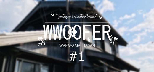 วูฟญี่ปุ่นครั้งแรกก็ติดใจแล้ว EP1: วูฟโฮสต์เรียกว่าบ้าน สภาพแบบนี้ไม่น่าใช่!!