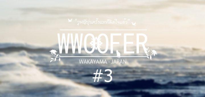 วูฟญี่ปุ่นครั้งแรกก็ติดใจแล้ว EP3 : เซอร์ไว (Survive) ไต้ฝุ่นมา!!