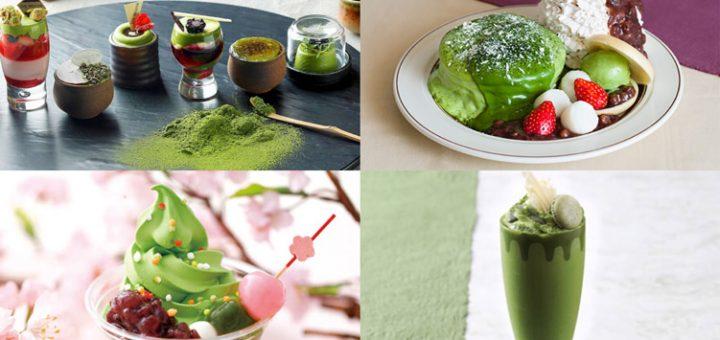 Top 5 เมนูขนมจาก Matcha ในญี่ปุ่นที่มีเฉพาะฤดูใบไม้ผลินี้เท่านั้น !