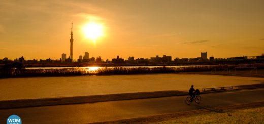 Good Evening TOKYO โตเกียวในมุมสงบ