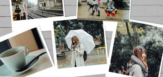 When I was in Tokyo #12 : หิมะหลงฤดูในรอบ 54 ปี ในเดือนพฤศจิกายน