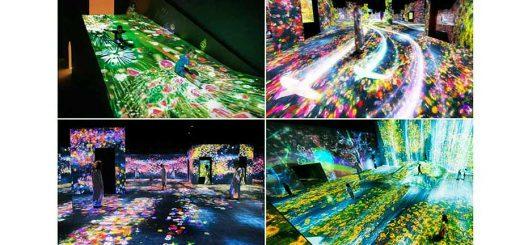ใครชอบดูงานอาร์ตดิจิทัลต้องปักหมุด MORI Building DIGITAL ART MUSEUM แหล่งท่องเที่ยวเติมเต็มประสบการณ์แสงสีเสียงขั้นเทพแห่งใหม่ของโอไดบะ