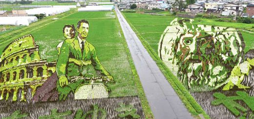 ตามไปดูศิลปะบนท้องทุ่งนาอาโอโมริ ปีนี้ทำเป็นรูป Atom boy & Audrey Hepburn  สวยงามและอาร์ตกว่าเคย