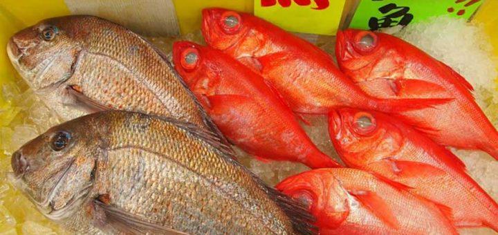 """""""ตลาดปลาอุโอะเฮย์"""" ศูนย์รวมความสดใหม่ คุณภาพจากท้องทะเลระดับพรีเมียม ที่อิจิโนะมิยะ จังหวัดจิบะ"""