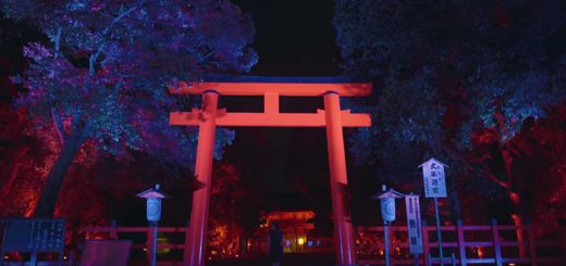 ไปชมความงดงามของเทศกาลแสงไฟในป่า ณ ศาลเจ้าชิโมกาโมะ ที่ได้ครีเอทีฟ TeamLab ระดับเทพมาสร้างสรรค์ผลงานเองกับมือ