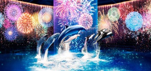 Maxell Aquapark Shinagawa จัดแสดง Hanabi Aquarium BY NAKED