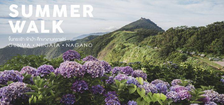 Summer walk ขึ้นกระเช้า เข้าป่า ศึกษางานคราฟท์ ที่จังหวัด Gunma • Niigata • Nagano ตอน Niigata-นีงะตะ