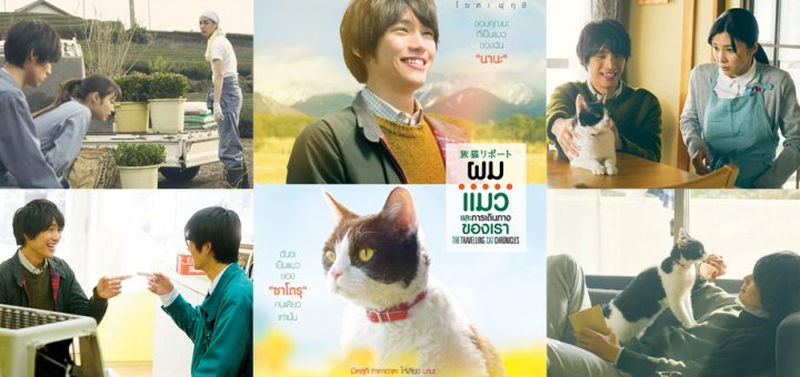 Movies Reviews รีวิว The Travelling Cat Chronicles แมวและครอบครัว