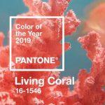 เติมสีสันรับปีใหม่ด้วยสี Living Coral จาก Pantone 2019