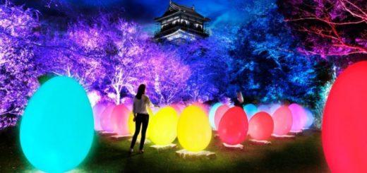 """พบกับนิทรรศการศิลปะดิจิทัลสุดฮอต """"teamLab: Digitized Hiroshima Castle"""" ที่พร้อมจะเนรมิตปราสาทฮิโรชิม่าให้กลายเป็นพื้นที่แสดงแสงสีผสานเทคโนโลยีสุดล้ำ ก.พ. - เม.ย. นี้!"""