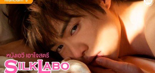 หนังเอวี เอาใจสตรีโดยเฉพาะ Silk Labo l WOM Highlight 5