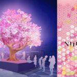 """ตามไปชมชมซากุระในรูปแบบของแสงสีเสียงสุดอลังและดิจิทัลอาร์ตที่งาน """"Nihonbashi Sakura Festival 2019"""""""