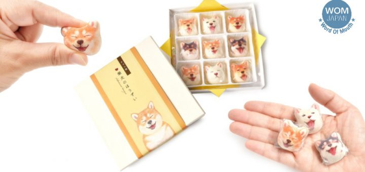 น่ารักเกินไปแล้ว ไม่กล้ากินกันเลยทีเดียว มาร์ชแมลโลว์น้องหมาชิบะ ขนมของฝากสุด cute จากญี่ปุ่น