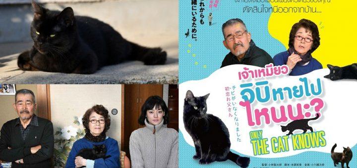 Movie Review : รีวิวภาพยนตร์ Only The Cat Knows เจ้าเหมียวจิบิหายไปไหนนะ?