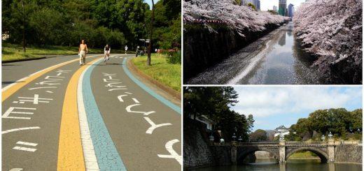 ปักหมุด 5 สถานที่อากาศดีสำหรับวิ่งจ๊อกกิ้งในโตเกียว