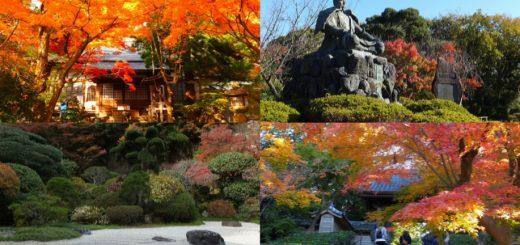8 สถานที่ชมใบไม้แดงในคามาคุระ จังหวัดคานากาว่า
