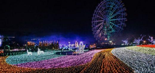 """สุดยอดงานประดับไฟสุดคิ้วท์ที่ไม่ค่อยมีคนรู้จัก """"Tobu Zoo Winter Illumination"""" ปี 2019-2020"""