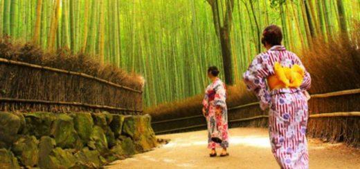 ปักหมุด 4 ร้าน & โรงแรมที่ต้องเช็คอินเมื่อไป Arashiyama แห่ง Kyoto